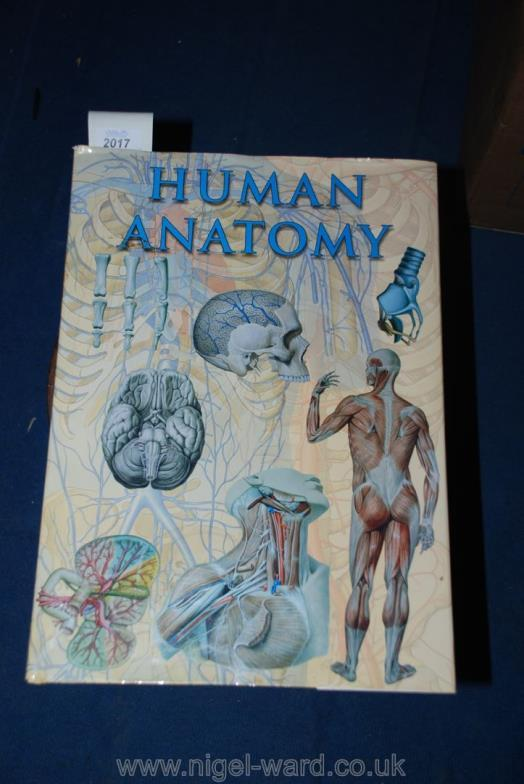 Nigel Ward Co Sale 2 An Illustrated Human Anatomy Book