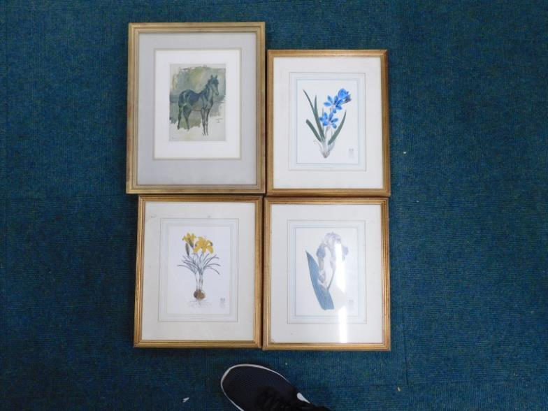 Golding Young U0026 Mawer Lincoln : A Set Of Three Royal Kew Gardens Botanical  Prints, : Online Auction Catalogue